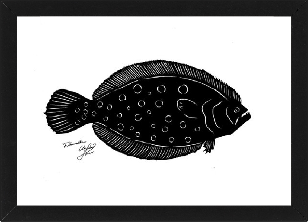 silhouette of a flounder